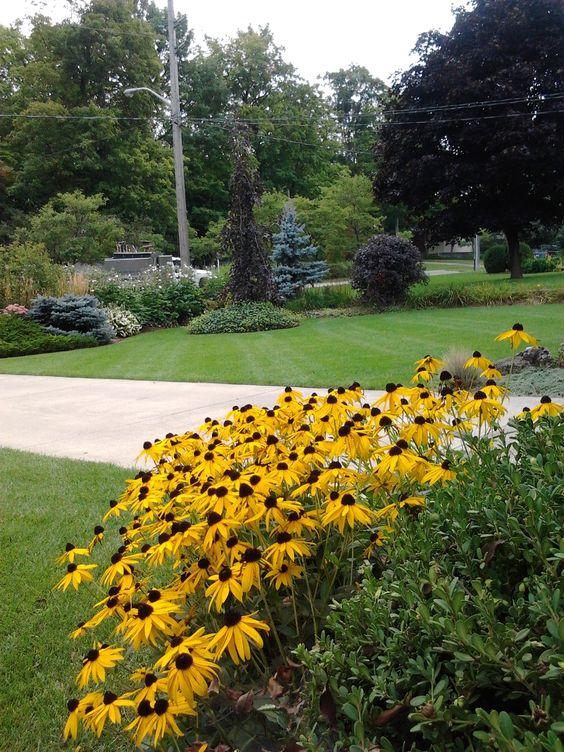 Lawn/garden maintenance