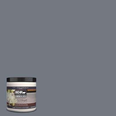 8 oz. #PPF-38 Deep Shale Interior/Exterior Paint Sample