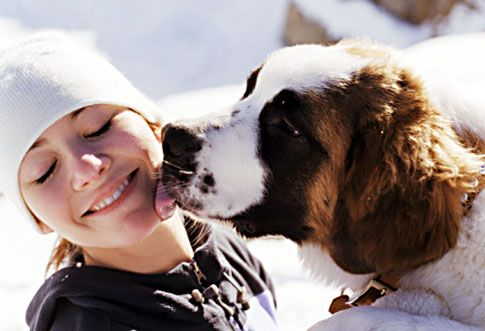 Human Versus Dog | Find - Fulfill - Flourish