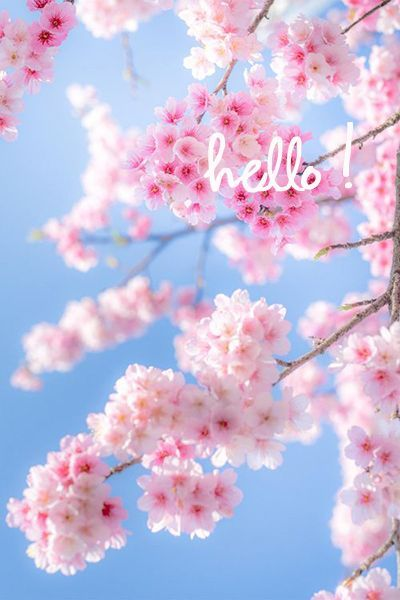 Elehandmade Kreativnye Idei I Mk Vk Beautiful Flowers Cherry Blossom Petals Flowers