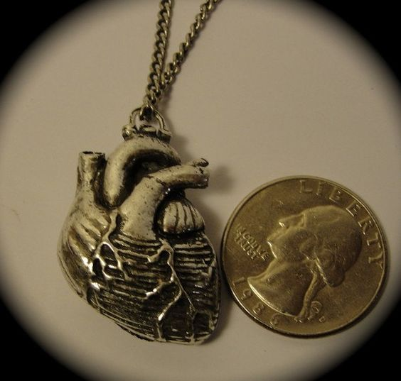Anatomical Heart Necklace in antique silver on a 24 by billyblue22, $38.00