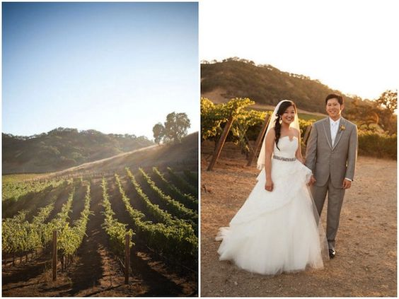 Gorgeous Monique Lhulillier wedding dress at this winery wedding in the golden California sunshine