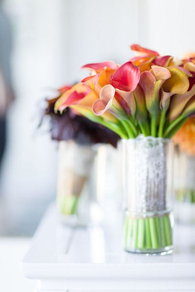 This is a gorgeous example of how stunning Mini Calla Lilies are - even by themselves! Shop Mini Calla Lilies and other wedding flowers at GrowersBox.com.