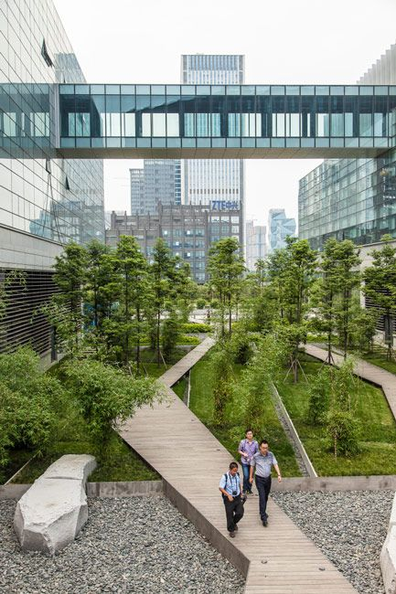 Symantec chengdu tom fox 08 landscape architecture works for Area landscape architects