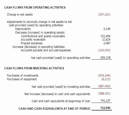 50 Luxury Non Profit Financial Statements Template In 2020