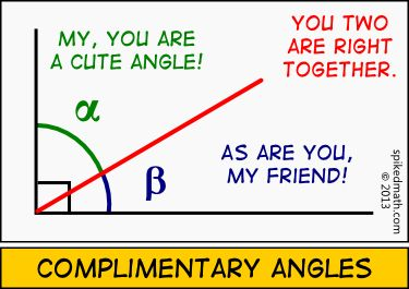Image result for complementary angle images funny