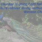 Inspirational Quotes: Courage