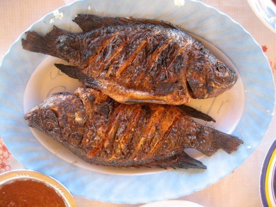 Yummy it is fried spicy fish from zimbabwe from africa for African fish recipes