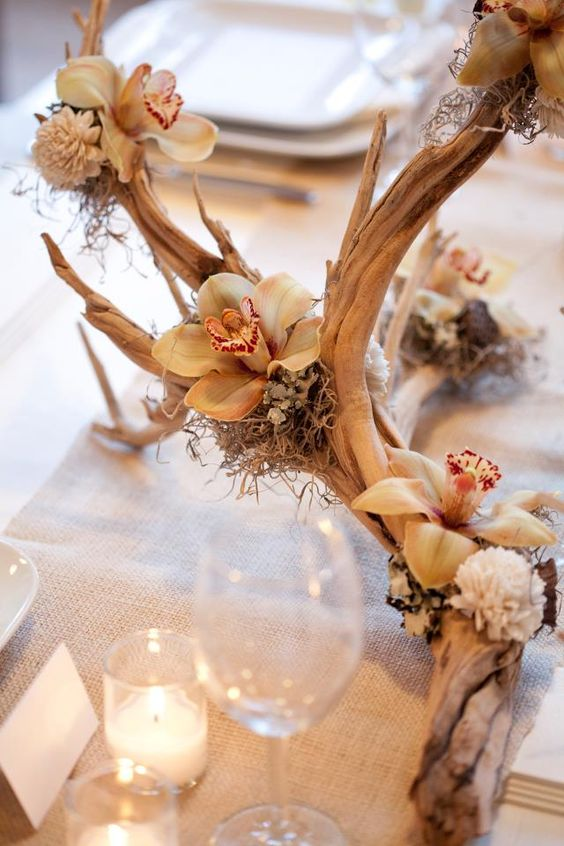 A beautiful orchid and driftwood centerpiece idea! Dressed-up rustic. This can be done with warmer toned orchids- peachier or more yellow, even green.