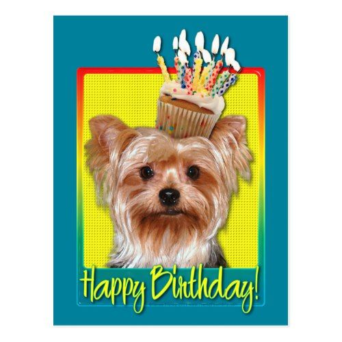 Birthday Cupcake Yorkshire Terrier Postcard Zazzle Com In 2021 Dog Birthday Wishes Dog Birthday Dog Greeting Cards