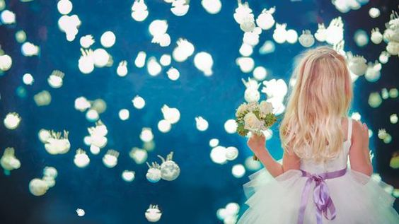 """Let us be your """"something blue."""" #Weddings at the Vancouver Aquarium."""