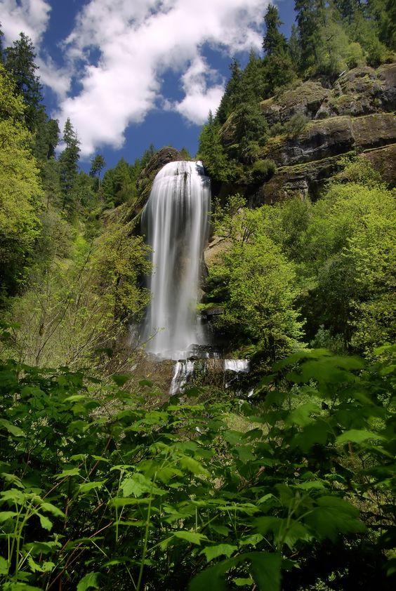 Silver Falls Near Coos Bay Oregon