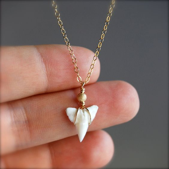 shark tooth gold chain necklace