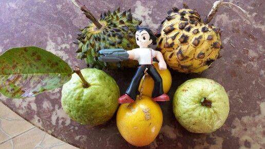 Frutas del patio