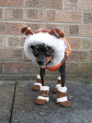 Small dog pet Chihuahua Yorkie jacket warm coat, windbreaker space coat hoodie | eBay