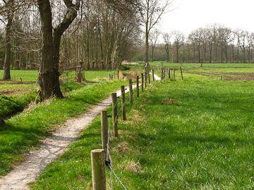 Deze lange route is het eerste deel van een megawandelroute die het mooiste van het Westerkwartier (de regio ten westen van de stad Groningen) laat zien. Met een afstand van 39 kilometer een uitdaging voor de (geoefende) wandelaar. Voor meer informatie zie de beschrijving op de website.