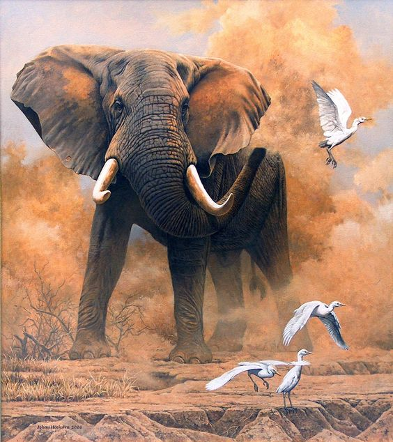 realistic art paintings | Dusty Elephant with Egrets – 2006 Johan Hoekstra Wildlife Art