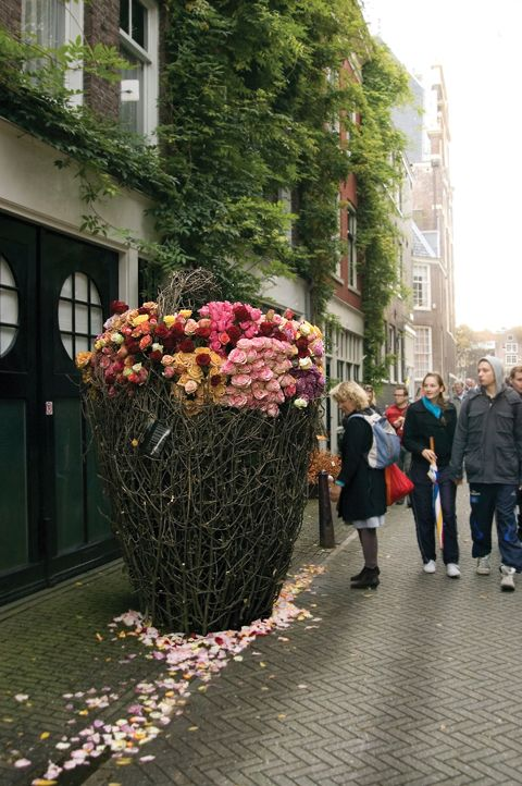 2.Rose basket Magical Forest shop 1- now that is a big delivery of flowers.