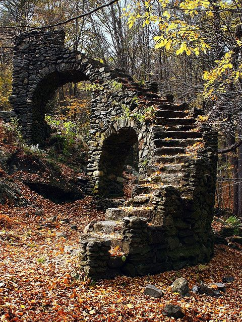 a staircase in the woods.
