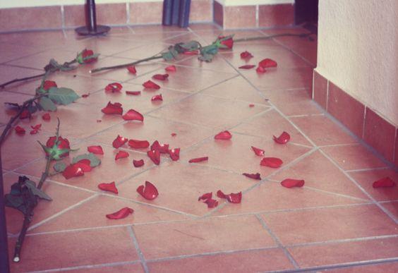 ~ follow the petals
