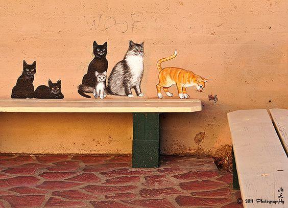 Arizona Has The Best Cat Street Art: