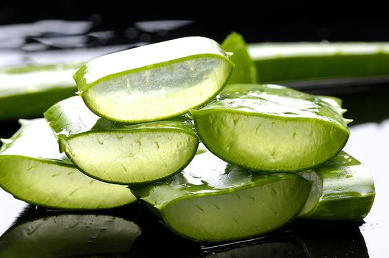 Seven Benefits and Usage of Aloe Vera | Aloeholic | Forever Living Business: