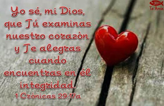 1 Crónicas 29:17a facebook.com/jesusteamamgaministries