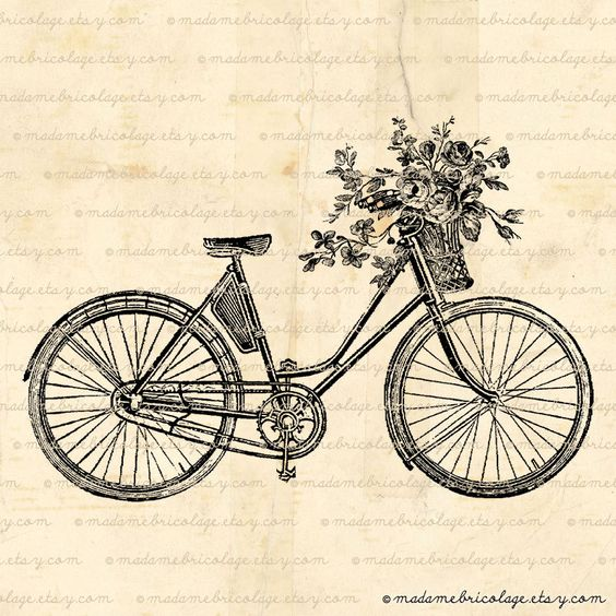 bicycle basket of wild flowers - enjoy the journey