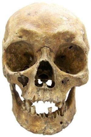 A new method of establishing hair and eye color from modern forensic samples can also be used to identify details from ancient human remains, finds a new study published in BioMed Central's open access journal Investigative Genetics.