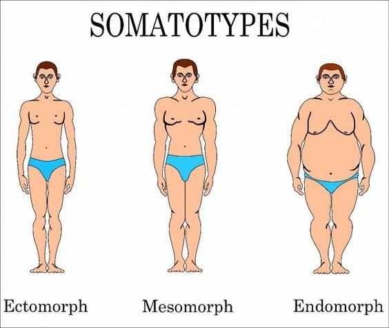 Russe body different mesomorph ectomorph dress endomorph types bodycon on size jcpenney