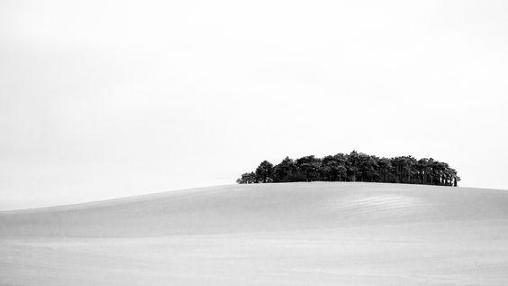 Blanc et noir | by lilouha