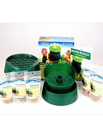 how to make wheatgrass seeds