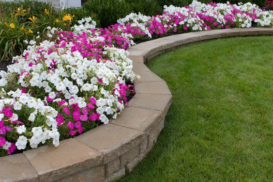 A short retaining wall that creates dedicated planting beds easily distinguishable from the grass lawn.