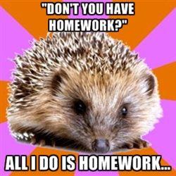 Homeschooled Hedgehog - Dont you have homework? All I do is Homework...:
