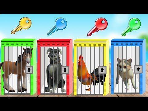 Doru Ati Cizgi Film Ile Hayvanlari Ogreniyorum Cici Tv Youtube Hayvan Youtube Mor
