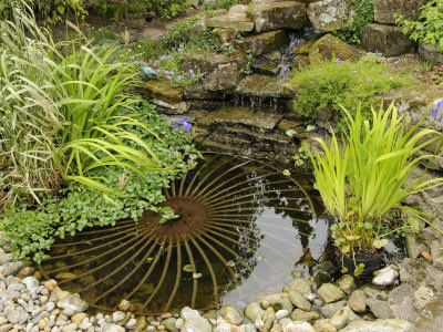 Small garden pond with rustic wheel feature and waterfall for Small frog pond ideas