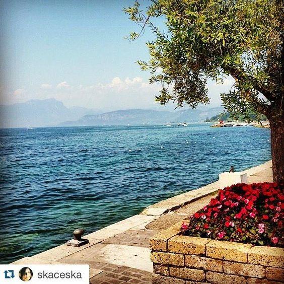 #Repost @skaceska ・・・ Giornata soleggiata al lago #gardasee #garda #lake #lagodigarda #gardalake #lazise  #caldo #e…