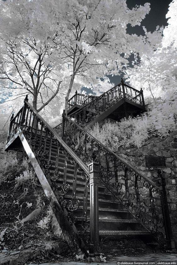 Infrared Photography by Oleg Stelmach