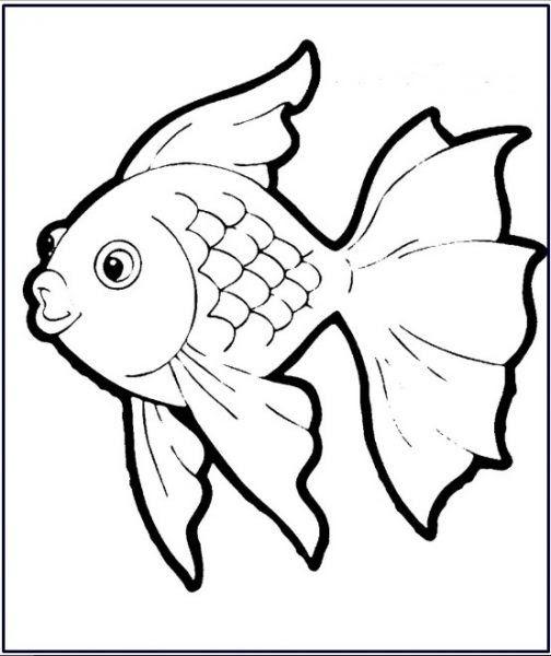 Paling Keren 30 Mewarnai Gambar Ikan Lucu Di 2020 Dengan Gambar