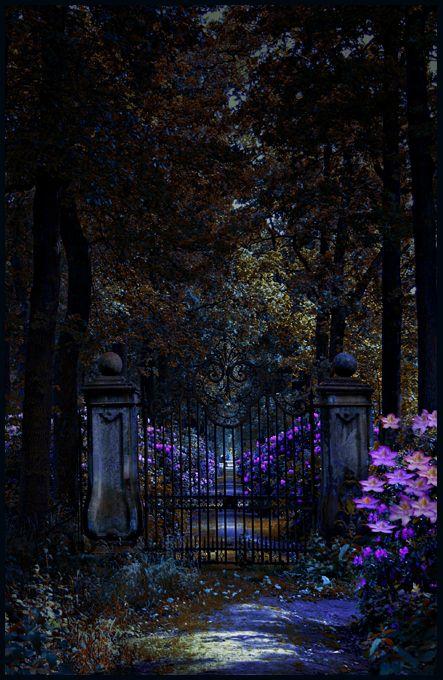 Lavender-lit moonlight stroll.