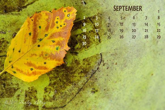 Free Download - September 2012 Calendar