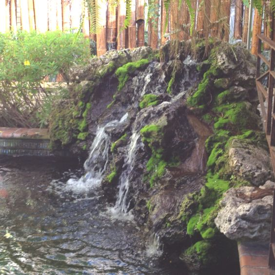 Pinterest the world s catalog of ideas for Koi ponds and waterfalls