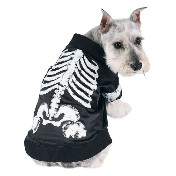 Skeledog Dog - Available in pet sizes Small, Medium, and Large. Includes: black t-shirt with skeleton print. Large.