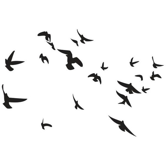 envol oiseaux dessin cadeau pinterest. Black Bedroom Furniture Sets. Home Design Ideas