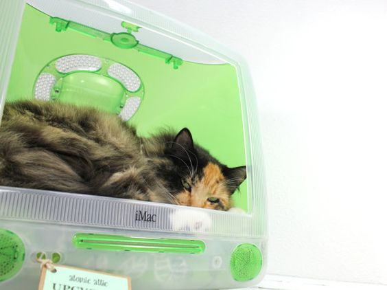 Upcycled Apple Computer Pet Bed  iMac  Think by AtomicAttic, $129.00