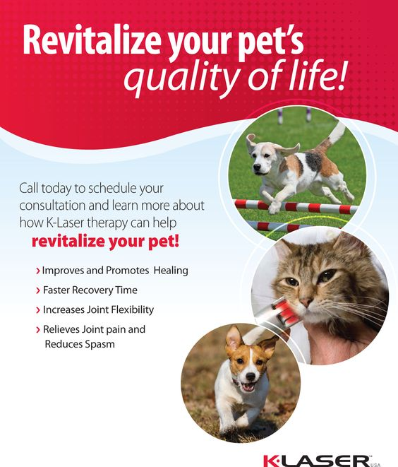 Barrington Oaks Veterinary Hospital- http://bovh.com/