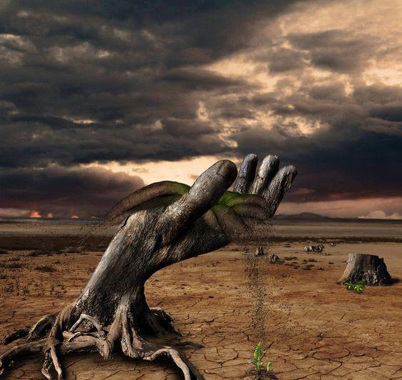 Árboles que no pueden sujetar la arena del desierto