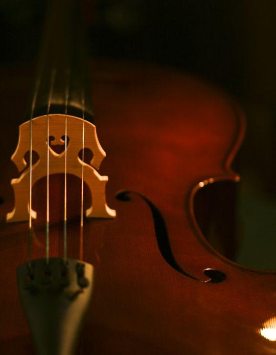 violoncelo wallpaper - Pesquisa Google