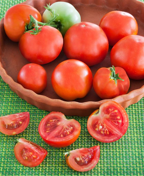 """Just Planted My Bonnie Plants """"Patio The Container Tomato"""