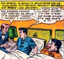 """Lives in Stately Wayne Manor...sleeps with Dick while Alfred delivers a """"package"""" to their bed"""